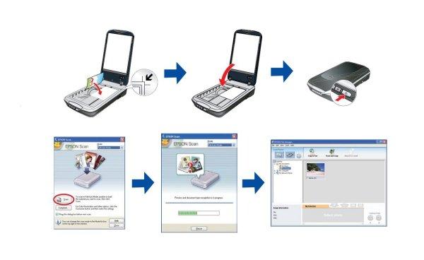 Планшетный сканер: принцип работы А3 и А4, устройство ...