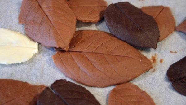 Çikolata yaprakları