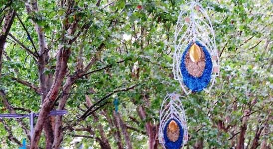 La plume de paon, theme des Lumières de Laval en 2020