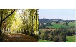 La Mayenne bucolique
