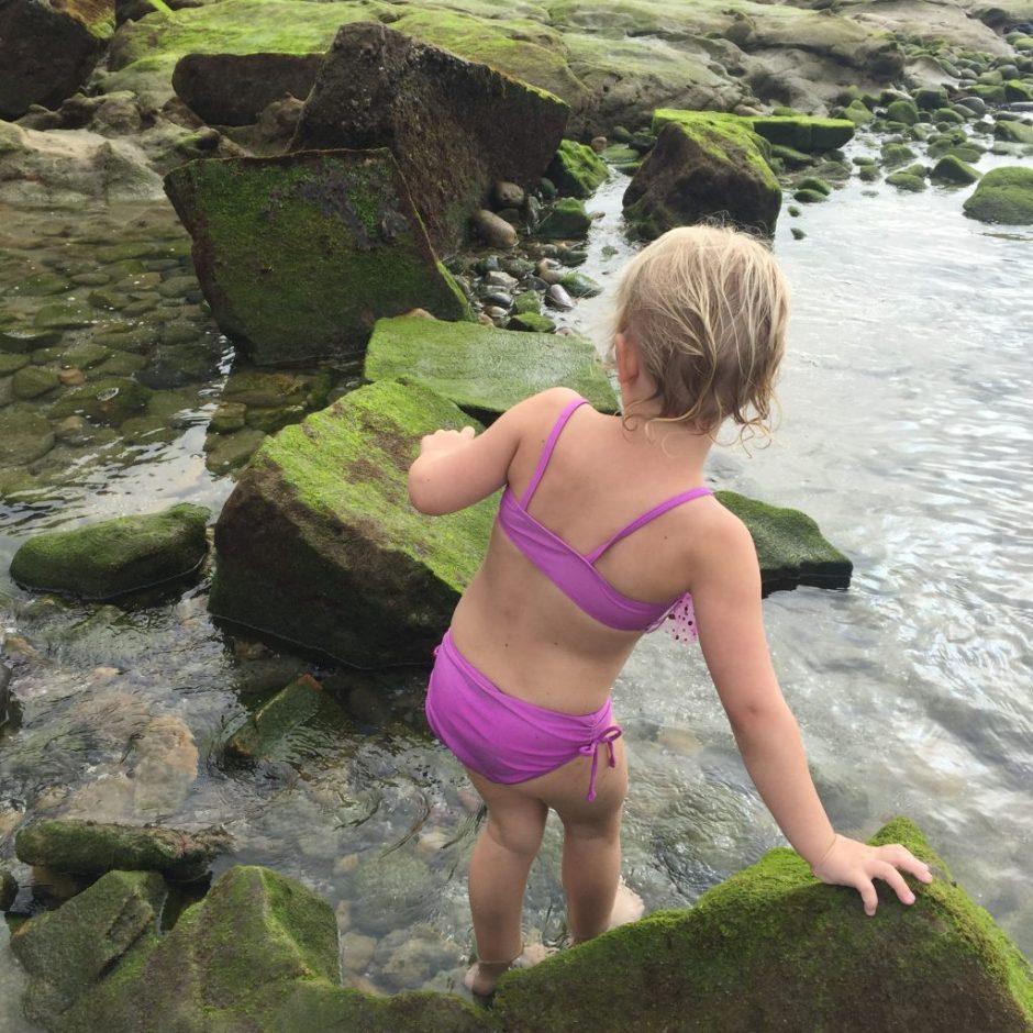 la-jolla-shores-tidepools