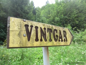 Où se trouve Vintgar Gorge ?