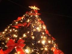 Concours de Noël - Le Goût du Voyage