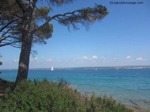 Istrie - Croatie