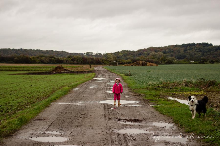 chemin boueux automne
