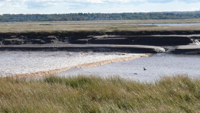 Tidal Bore Park is located 20 minutes' drive away from Le Griffon Bed & Breakfast.