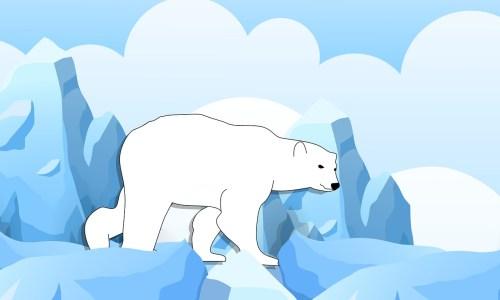 illustration histoire animaux polaires