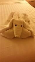 Dog towel buddy #2