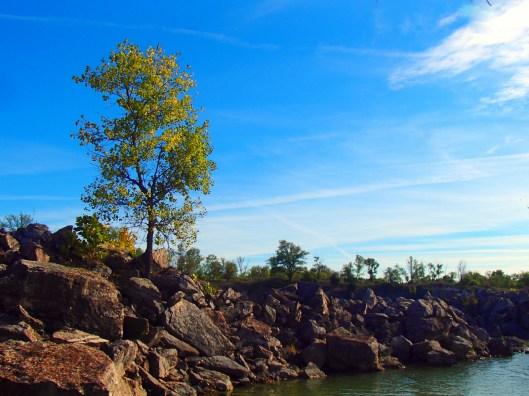 Lehigh Rocks