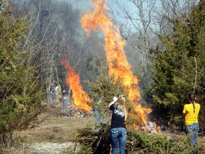Volunteers managing the controlled burns of trail debris.