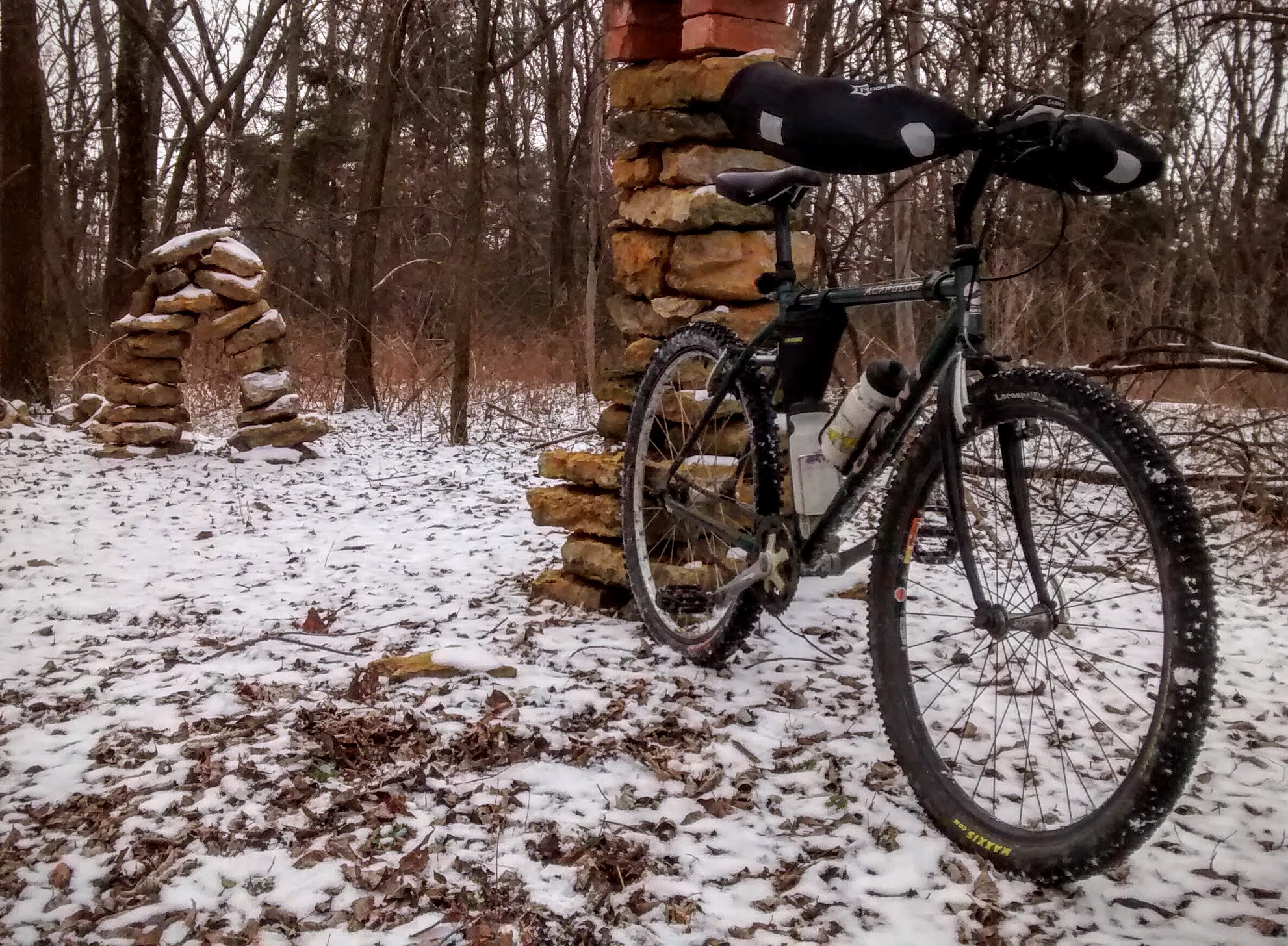 Winter Beauty at Lehigh Portland Trails