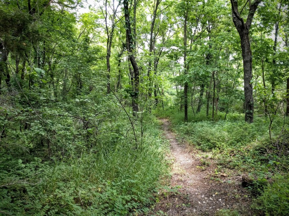 After looping south to the  property line, the trail passes through a wooded area before doubling back to the incoming trail, then back to the beginning.