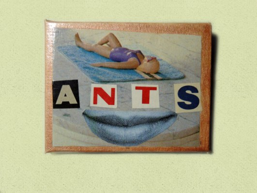 _ants-pin