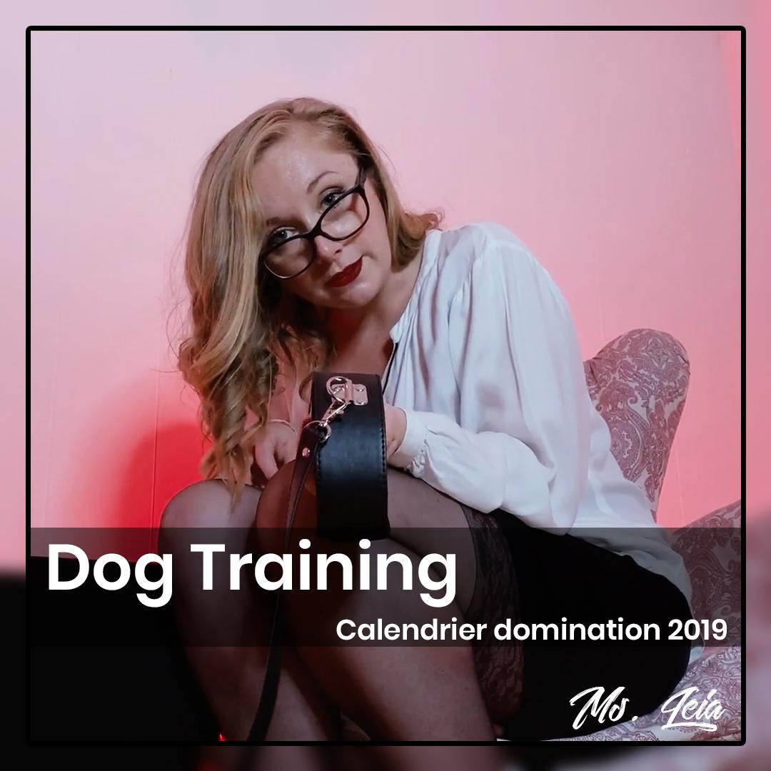 Dog training pour soumis