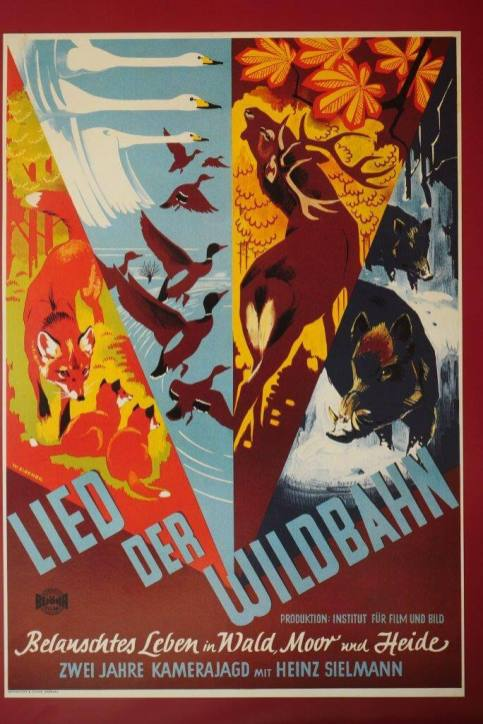 """Der Film """"Lied der Wildbahn"""", der dem deutschen Publikum den Wald, das Wild und die (jagdliche) Hege näherbrachte"""