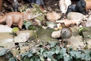 Blog-Leica_Birding_5_Bill_Oddie_Hampstead_March_2016_a_Dunnock_hops_around_with_the_dinosaurs_in_Bills_garden-1025x683