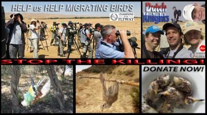 Vogelaars bij Yotvata Eilat Israel; Birdwatchers at Yotvata Eilat Israel
