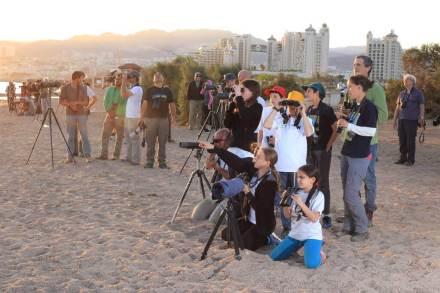 klein-Eilat-Birders-COTF2016_Yuval-Dax