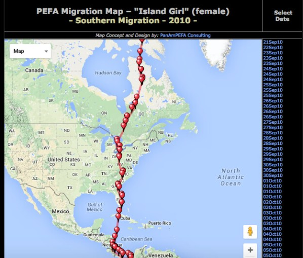 Island-Girl-2010-migration
