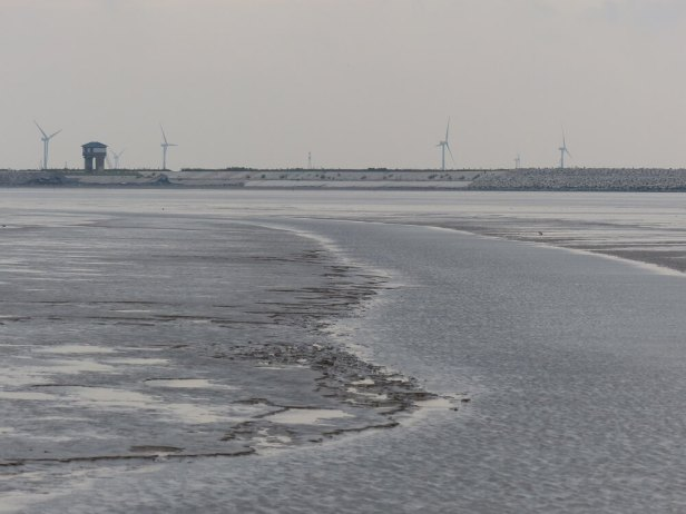 Large-sections-of-the-Jiangsu-coast-have-been-claimed-from-the-mudflats-and-more-are-earmarked-c-Rich-Hearn-WWT