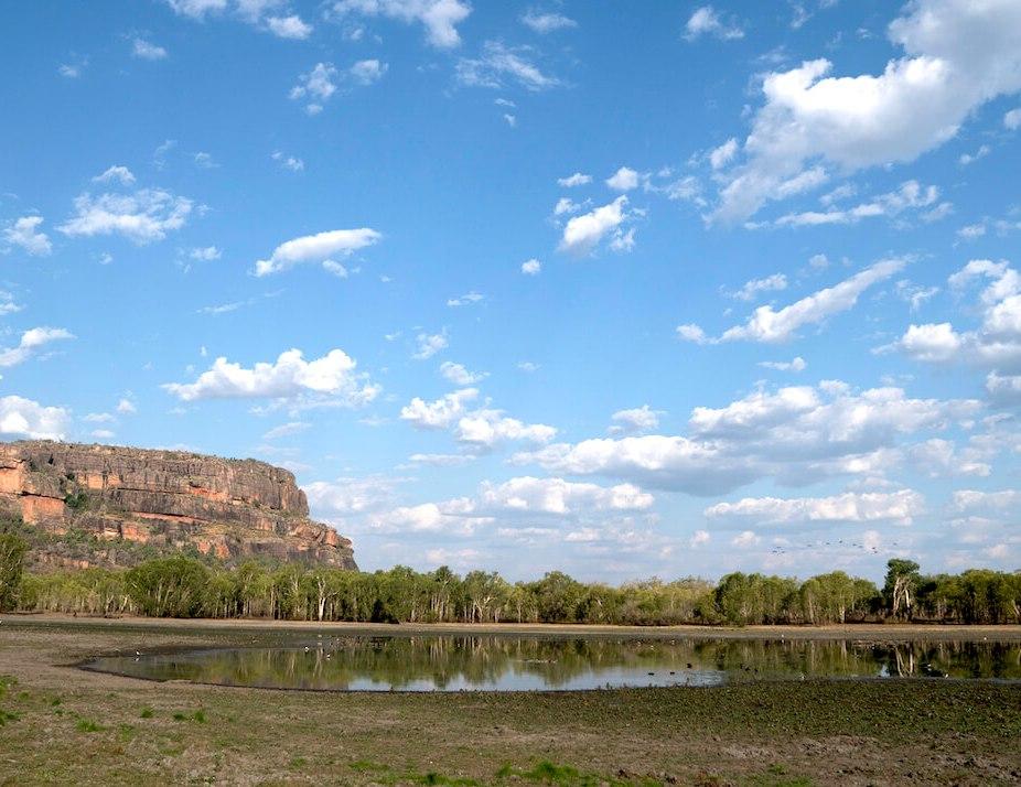 P2_landscape