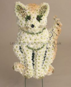 Funeral-Tribute-Cat-2