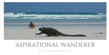 Aspirational Wanderer