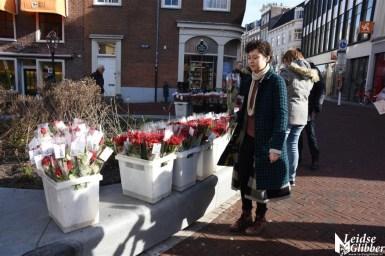 Hartekind rozen (30)