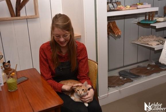 Kattencafé Sophie (14)