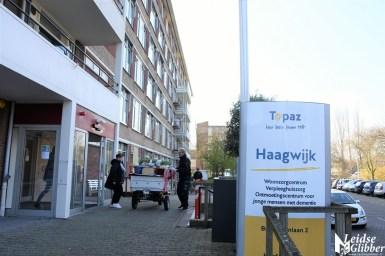 Tulpen Haagwijk CHDR Rederij (26)