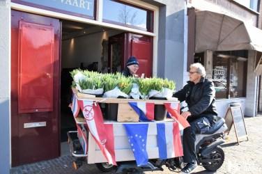 Tulpen Haagwijk CHDR Rederij (21)