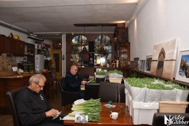 Tulpen Haagwijk CHDR Rederij (6)