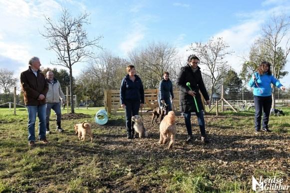 Honden speelveld Zoeterwoude (12)