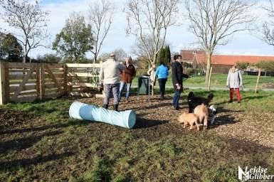 Honden speelveld Zoeterwoude (3)