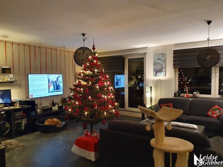 opzetten kerstboom (10)