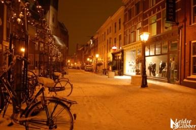 SneeuwZondag20-1 (13)