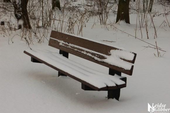 Sneeuw2. 15 jan (28)