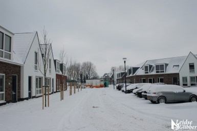 Sneeuw2. 15 jan (5)