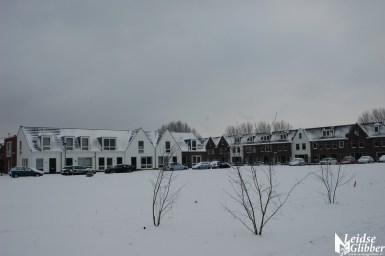 Sneeuw2. 15 jan (2)