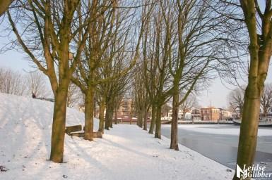 Sneeuw 22janu (5)