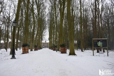 7 Sneeuw Oud Poelgeest (6)