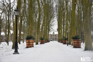 7 Sneeuw Oud Poelgeest (5)