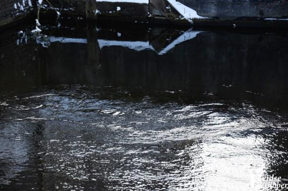 Damwand Maresingel vorst ijs (16)