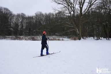 6 Sneeuw De Leidse Hout (35)