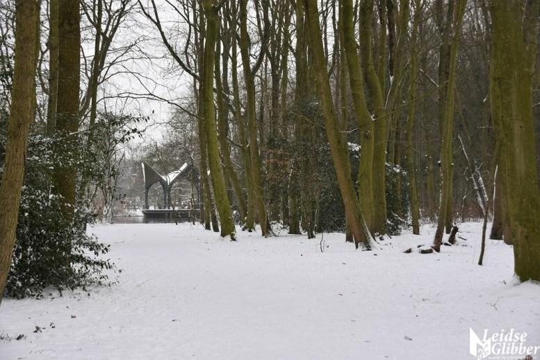 6 Sneeuw De Leidse Hout (28)