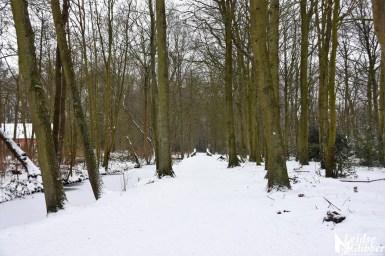 6 Sneeuw De Leidse Hout (27)