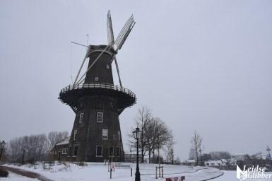 5 Sneeuw molen de Valk e.o (17)