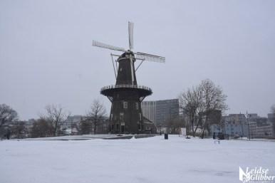 5 Sneeuw molen de Valk e.o (11)