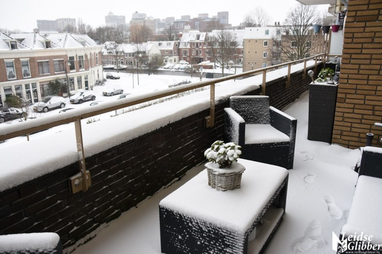 sneeuw (65)