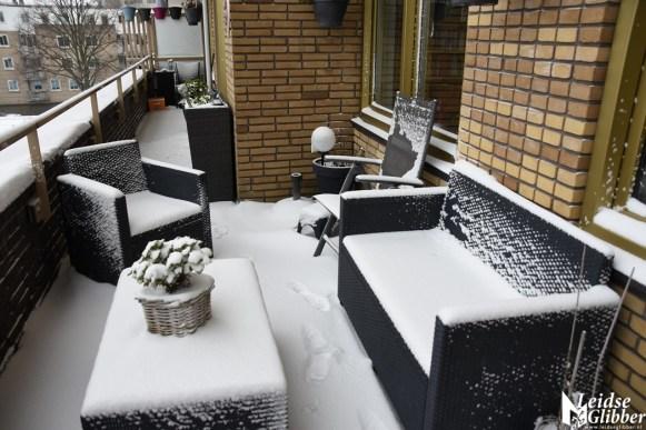 sneeuw (64)